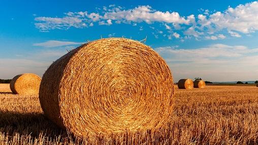 obowiązkowe ubezpieczenie rolnicze